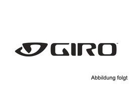 Giro Visor: Bronte black/silver 18