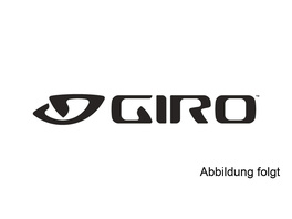 Giro Visor: Vasone/Hale white/silver 18